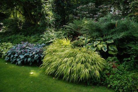 Záhon v malej záhrade - Obrázok č. 3