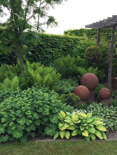 Záhon v malej záhrade - Obrázok č. 17