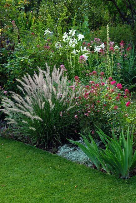 Záhon v malej záhrade - Obrázok č. 20