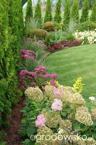 Záhon v malej záhrade - Obrázok č. 21