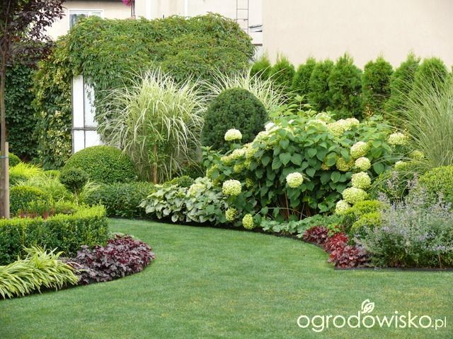 Záhon v malej záhrade - Obrázok č. 24