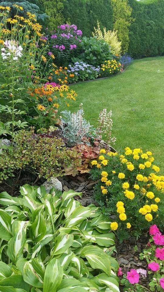 Záhon v malej záhrade - Obrázok č. 26