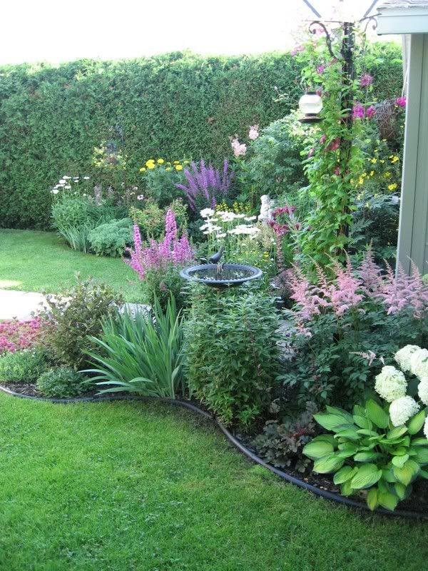Záhon v malej záhrade - Obrázok č. 27