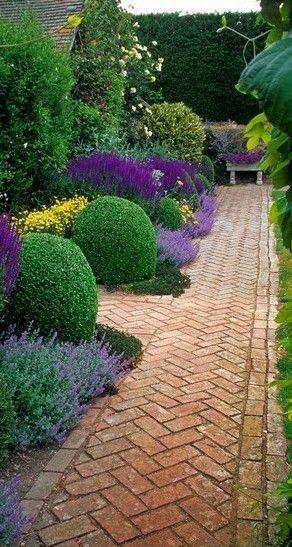 Záhon v malej záhrade - Obrázok č. 32