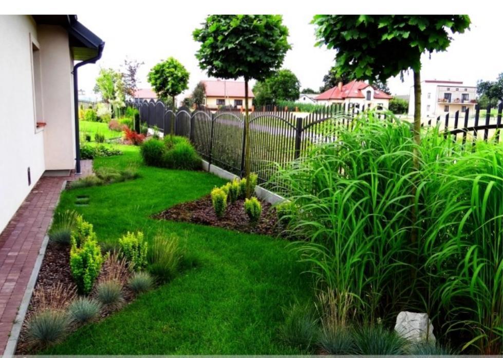 Záhon v malej záhrade - Obrázok č. 36