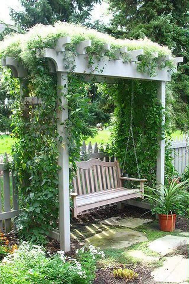 Záhon v malej záhrade - Obrázok č. 40