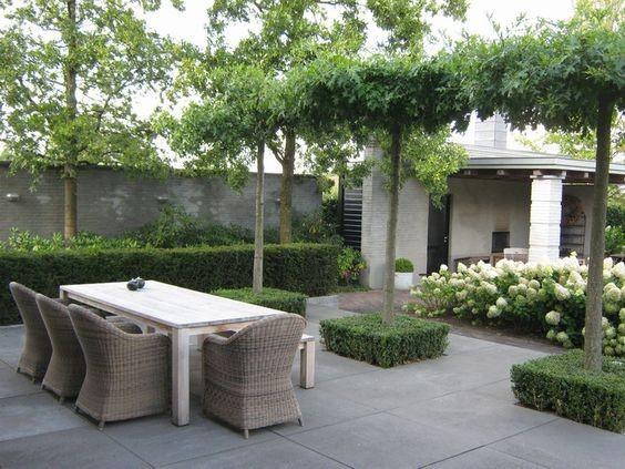 Záhon v malej záhrade - Obrázok č. 47