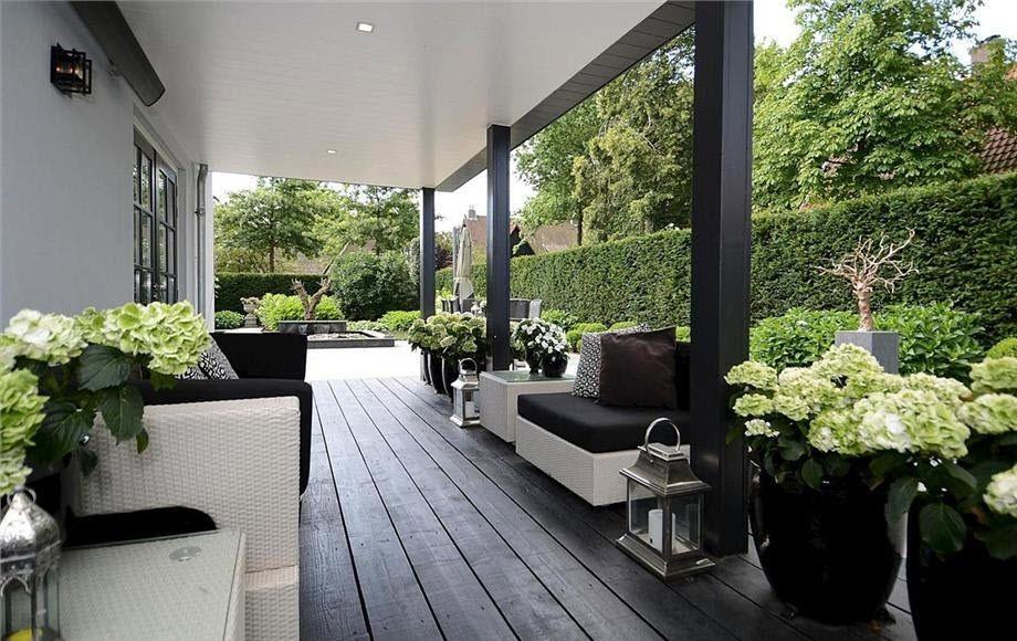 Záhon v malej záhrade - Obrázok č. 50