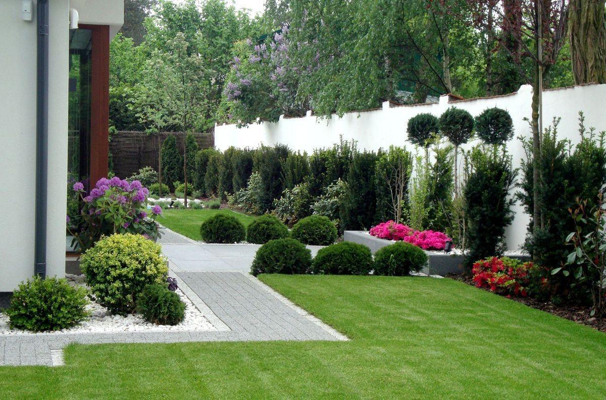 Záhon v malej záhrade - Obrázok č. 54