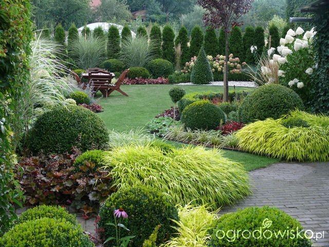 Záhon v malej záhrade - Obrázok č. 55