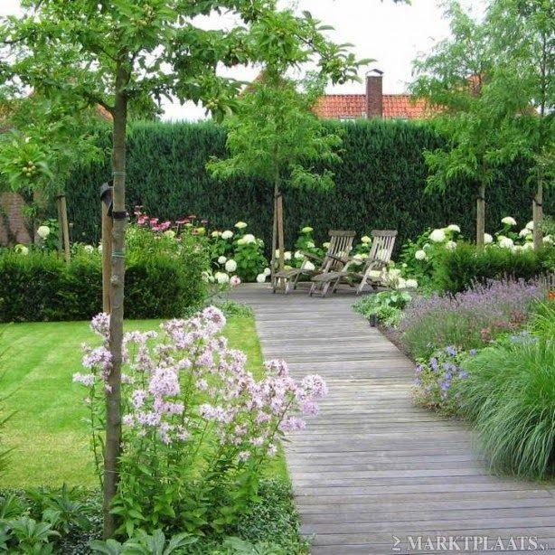 Záhon v malej záhrade - Obrázok č. 60
