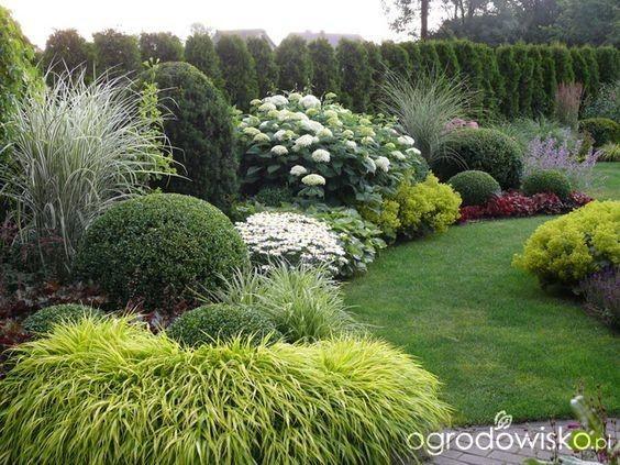 Záhon v malej záhrade - Obrázok č. 62