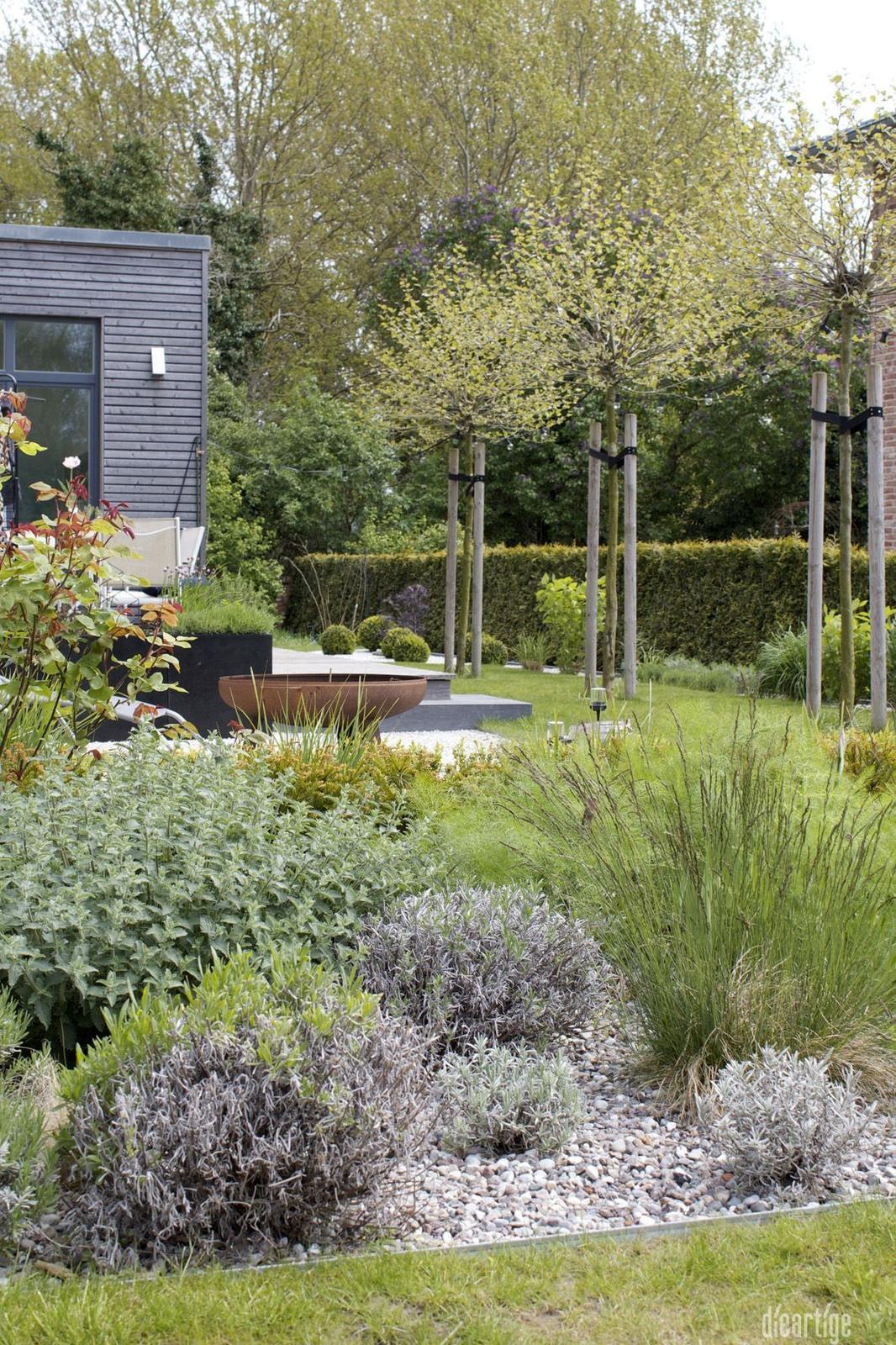 Záhon v malej záhrade - Obrázok č. 63