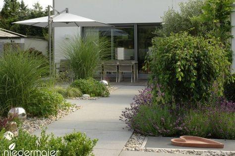 Záhon v malej záhrade - Obrázok č. 68