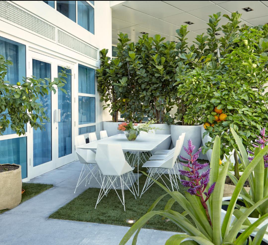 Záhon v malej záhrade - Obrázok č. 72