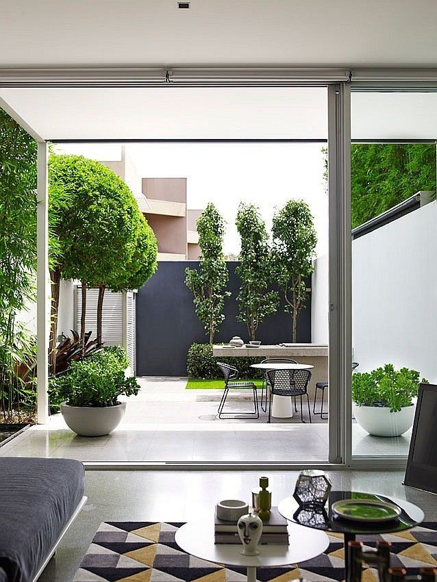 Záhon v malej záhrade - Obrázok č. 73
