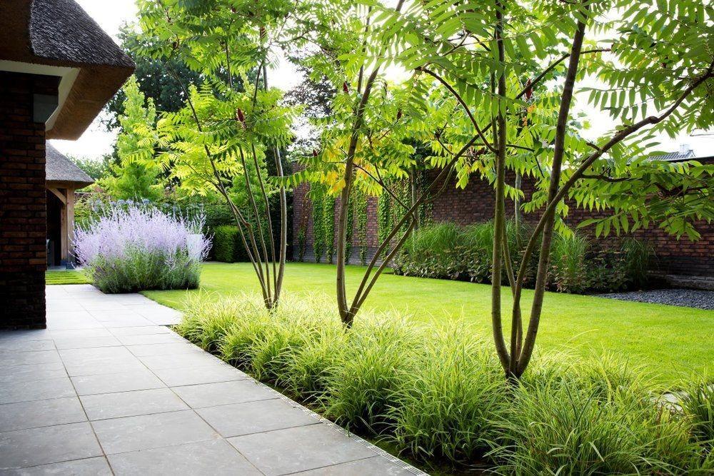 Záhon v malej záhrade - Obrázok č. 84