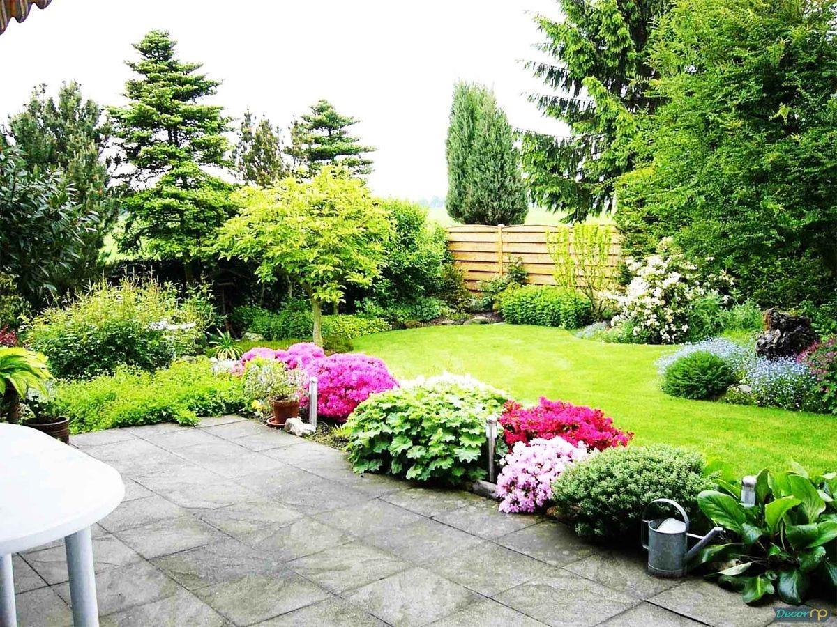 Záhon v malej záhrade - Obrázok č. 93