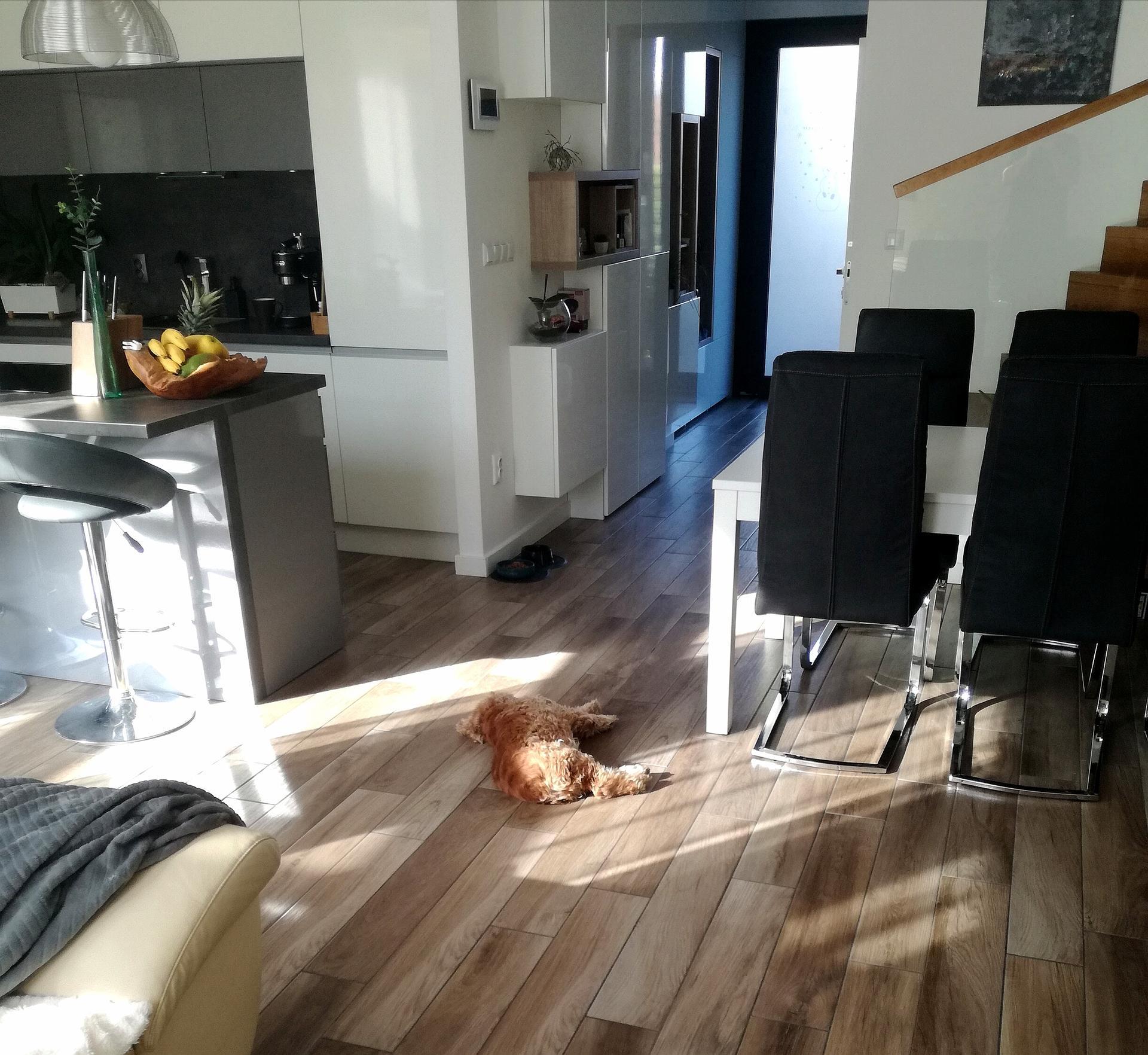 Posteľ má byť tam, kde pes spiiii... :-D - Obrázok č. 2