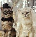 a hlavný aktéri svadobného dňa sú tu:)