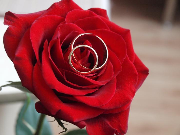 Anniversary ..or just for pleasure - na ružičke od mojej lásky :-)