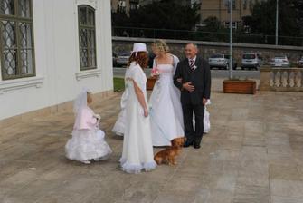 ..a už se venku chystá i nevěsta (stále ji nikdo neviděl)