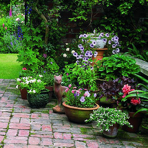 Rozkosne zahradky :) - Obrázok č. 1