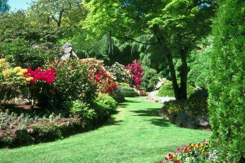 Rozkosne zahradky :) - Obrázok č. 6