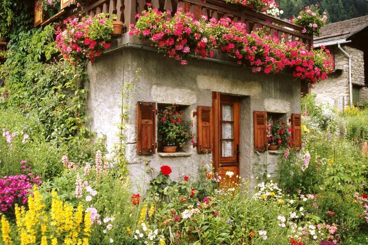 Rozkosne zahradky :) - Obrázok č. 15