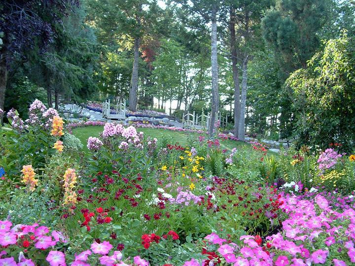 Rozkosne zahradky :) - Obrázok č. 18