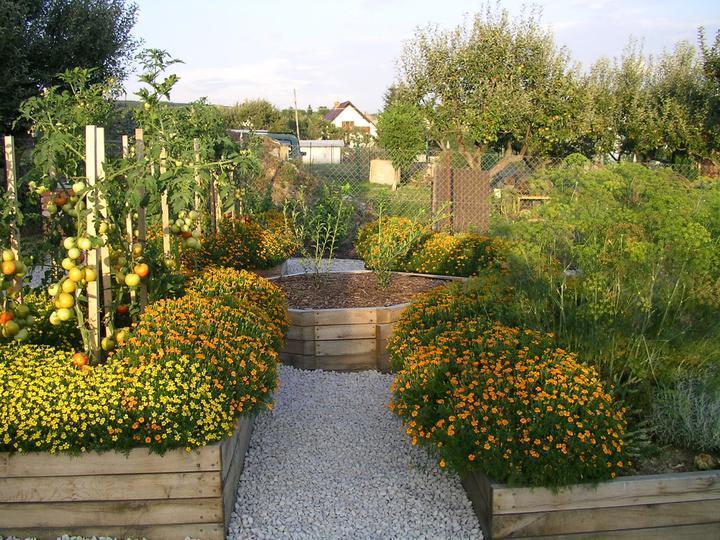 Rozkosne zahradky :) - Obrázok č. 37