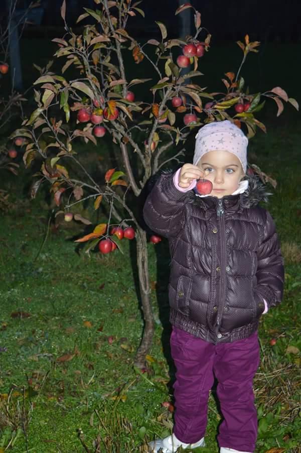 U nas DOMA   👪💟 - jablcka z nasej zahrady