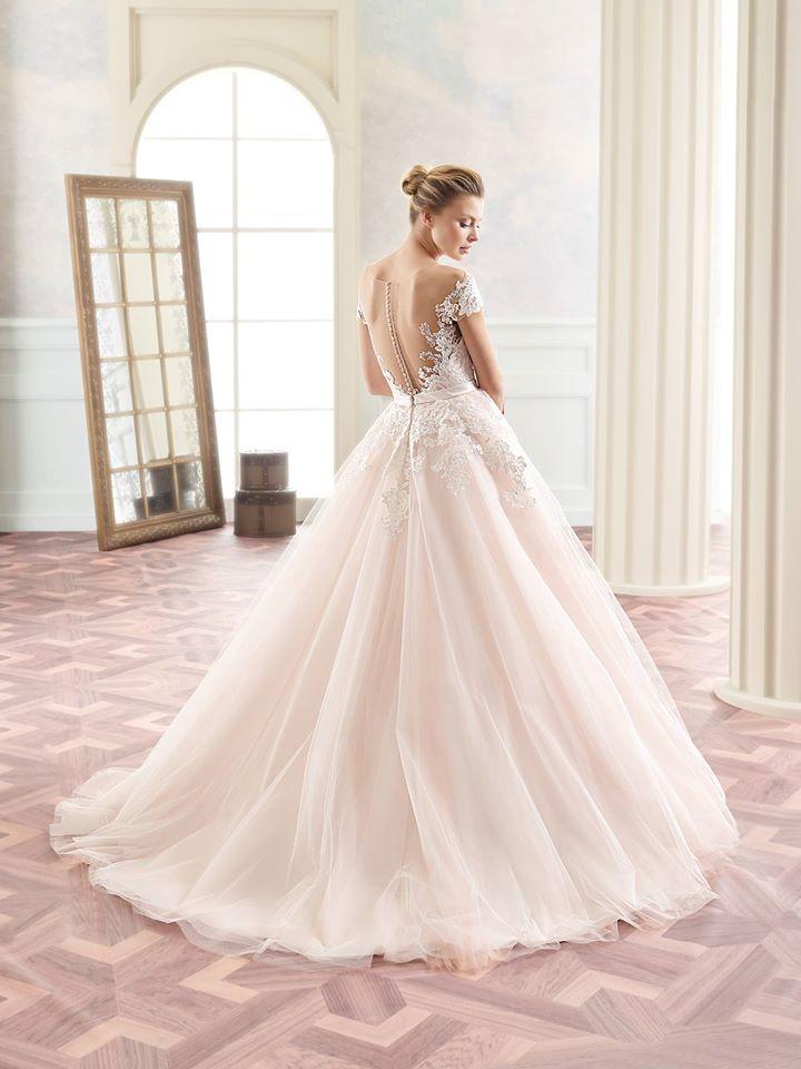 Svatba v růžové.... nechte se inspirovat. - Obrázek č. 1