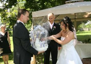 měli jsme i svatební holoubky