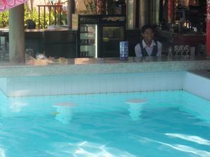 vodní bar