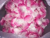 lupene,