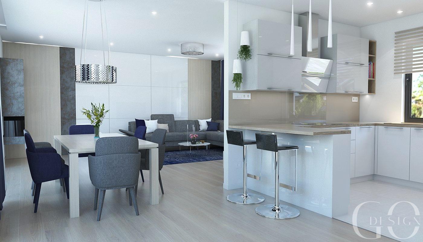 Návrh moderného domu s modrými akcentmi - Obrázok č. 2