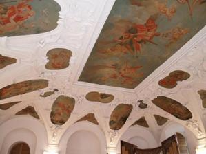 krásné fresky na stropě obřadní síně Salaterna