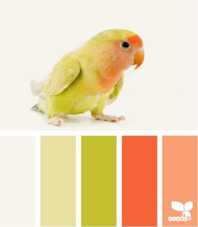 Dětský pokoj - naše inspirace - Barvy?