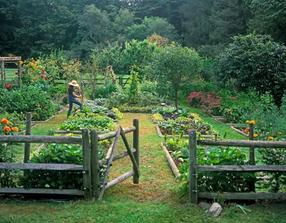 Zvažuju takovéto nějaké oddělení užitné části zahrady...