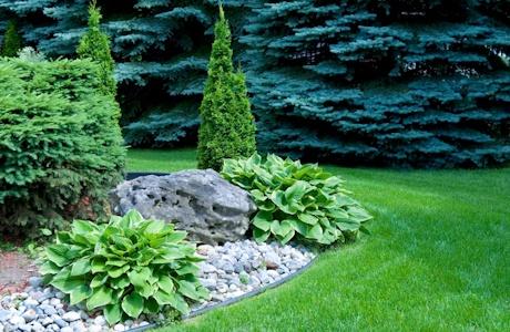 Zahrada - inspirace - Obrázek č. 46