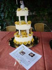 dort a svatební noviny