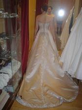 Salon Potěšení 79 - šaty č. 5 (zezadu)