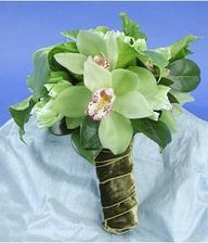 orchidee...moc jsem je chtěla....