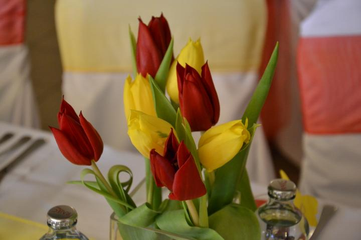 Zuzka {{_AND_}}Maťko - tulipány