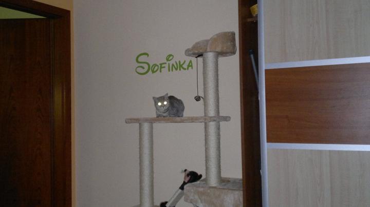 Sofinkin kútik - Obrázok č. 1
