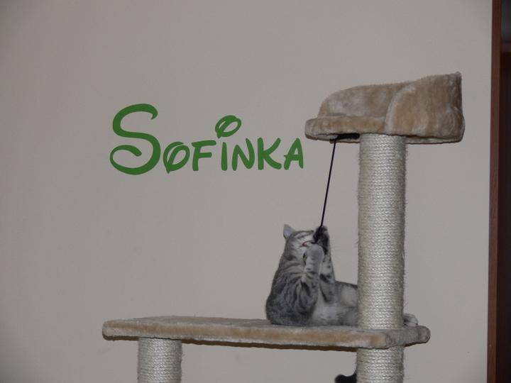Sofinkin kútik - Obrázok č. 2