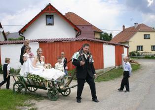 manželské povinnosti