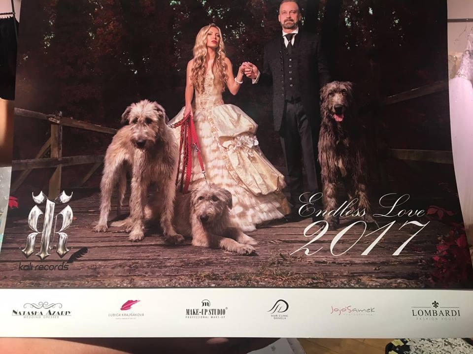 Luxusný Kalendár 2017 - Obrázok č. 1