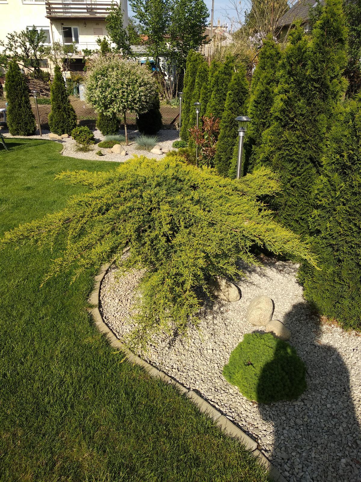 Naša záhrada - Obrázok č. 21